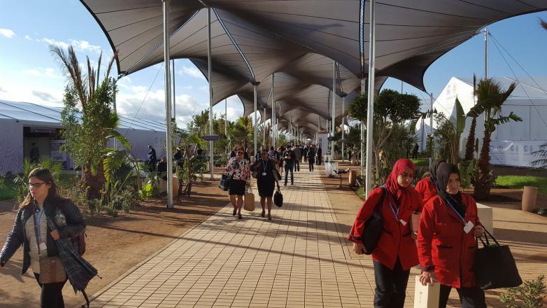 COP 22 em Marrakech (Foto: Rhys Gerholdt/WRI)