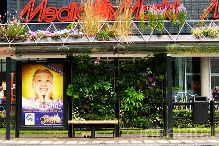 Eindhoven's Green Bus Stop (Foto: Divulgação)