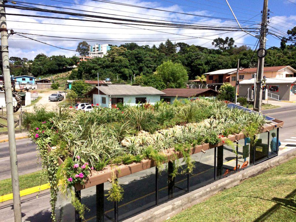 Parada Verde (Foto: Divulgação)
