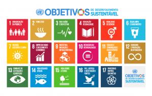 17 Objetivos da Agenda 2030.